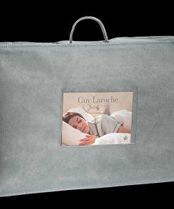 Μαξιλάρι Ύπνου VISCO ELASTIC (ALOE VERA) ANATOMICAL (60x40) της Guy Laroche